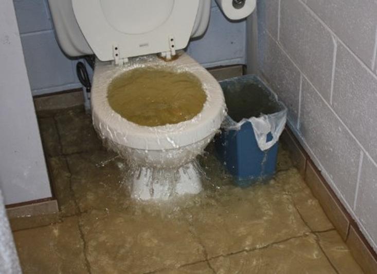 Jasa Sedot WC